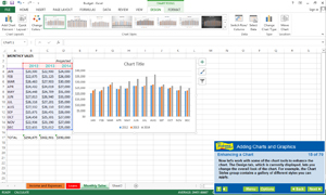 Find out how to enhance spreadsheets with charts and graphs.